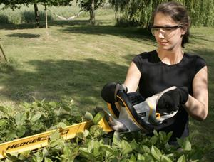 Hedge Sweep